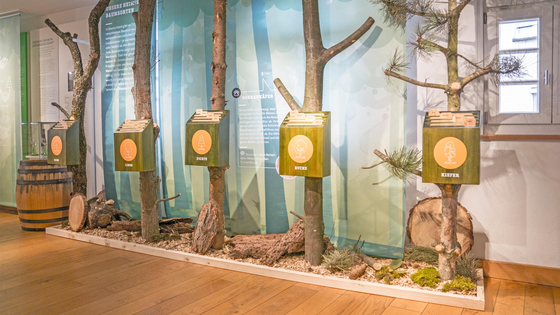 Waldausstellung_06