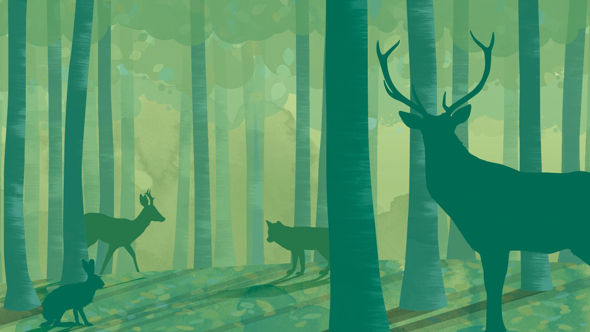 Waldausstellung_Titelbild
